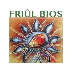 Friul Bios