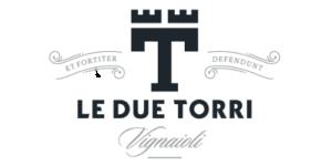 logo due torri