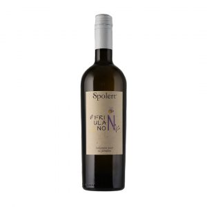 Bottiglia Friulano Naturale Spolert